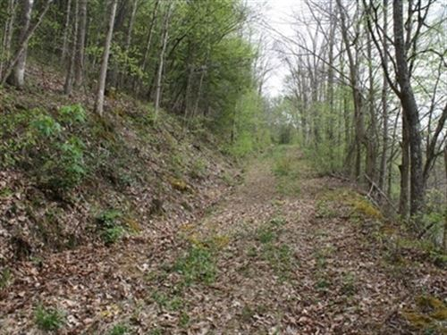 35 Acres 20 Acres With 3/4 Minerals : Ivydale : Clay County : West Virginia