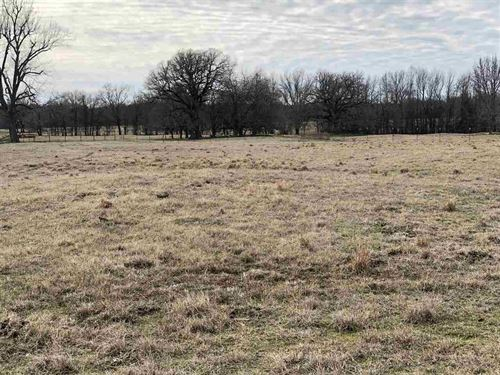 Miles Of Grassland : Bagwell : Red River County : Texas