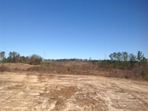 4-010 Rolling Hills Mini Farms Lot : Prattville : Autauga County : Alabama