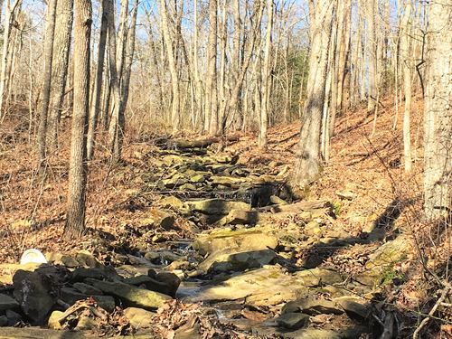 Soddy Creek Preserve : Graysville : Sequatchie County : Tennessee