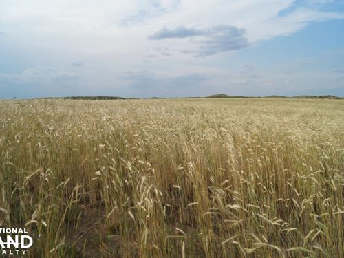 Rosston Ranch : Rosston : Beaver County : Oklahoma