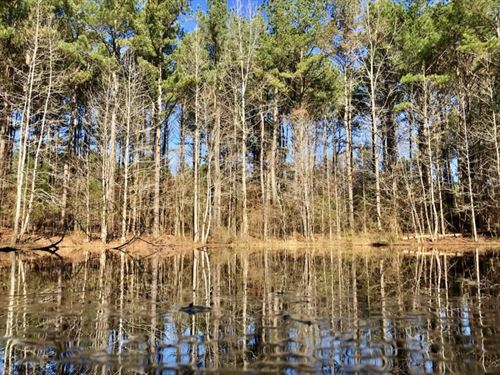 127.5 Acres Hunting/Timberland : Gore Springs : Grenada County : Mississippi