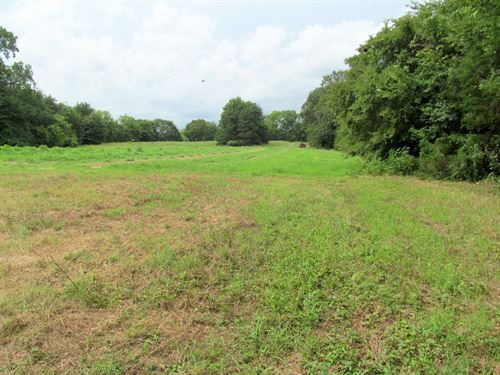 Acreage East Texas, Franklin County : Winnsboro : Wood County : Texas