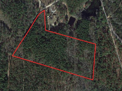 Secluded 13 Acre Homesite : Statesboro : Bulloch County : Georgia