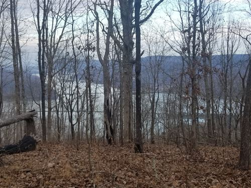 30+/-Acres Lake View Property : South Pittsburg : Marion County : Tennessee