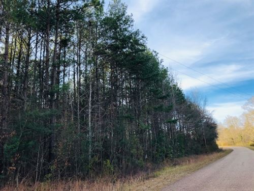 17.5 Acres : McComb : Pike County : Mississippi