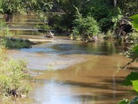 Retreat On 17 Waterfront Acres : Poplarville : Pearl River County : Mississippi