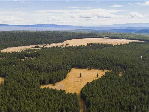 Parker Ranch : Silver Lake : Klamath County : Oregon