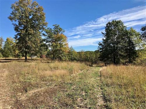 211 Acres With a Special Kind of : Richwoods : Franklin County : Missouri