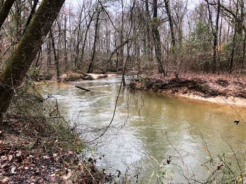 120 Acres on Bull Mountain Creek : Shottsville : Marion County : Alabama
