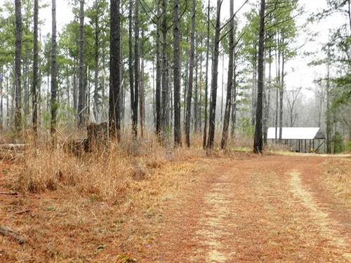 232 Acres on Bull Mountain Creek : Shottsville : Marion County : Alabama