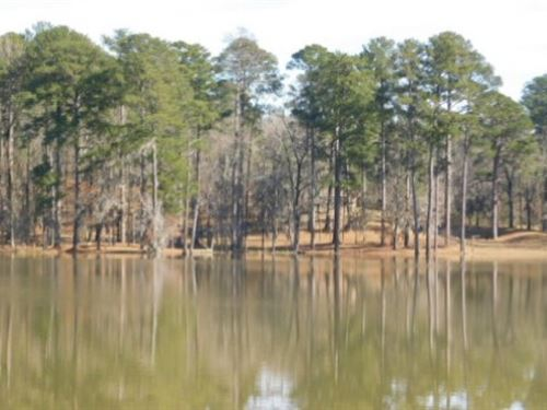 193 Acres In Hinds County In Clinto : Clinton : Hinds County : Mississippi