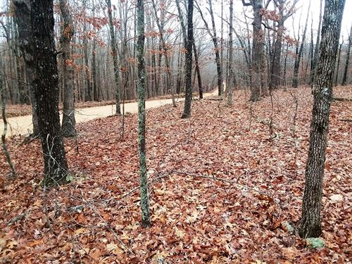 Wooded Land Willow Springs : Willow Springs : Howell County : Missouri