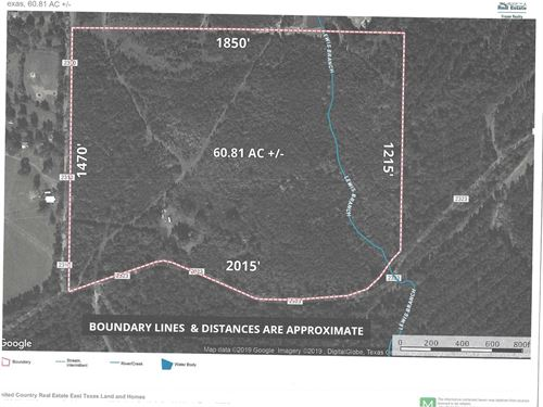 East Texas Hunting, Recreational : Rusk : Cherokee County : Texas