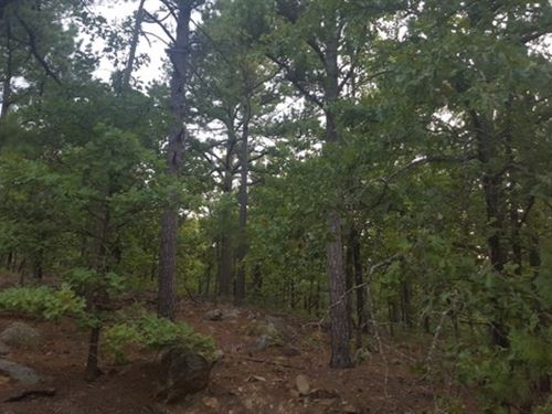 Hunting Land For Sale : Pitts : Pittsburg County : Oklahoma