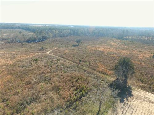 107 Acre Farm With Timberland And : Glennville : Tattnall County : Georgia