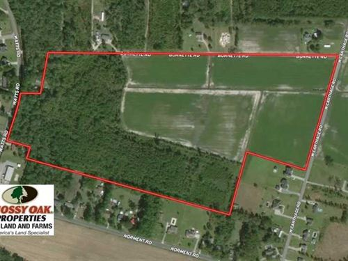 58 Acres of Farm And Timber Land : Lumberton : Robeson County : North Carolina