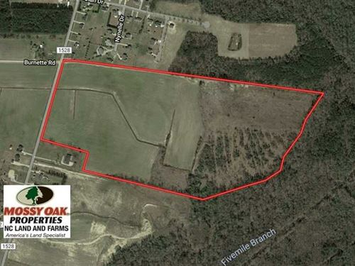 Under Contract, 73 Acres of Farm : Lumberton : Robeson County : North Carolina