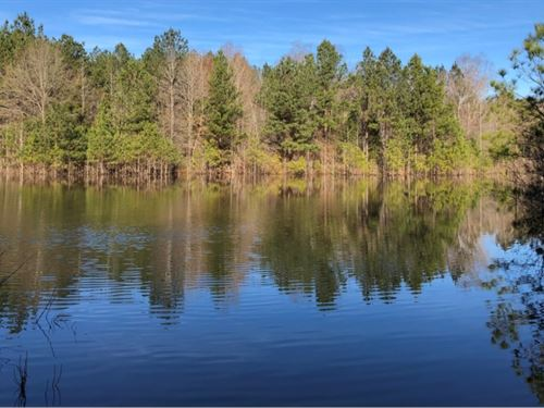 168.32 Acres In Choctaw County : Stewart : Choctaw County : Mississippi