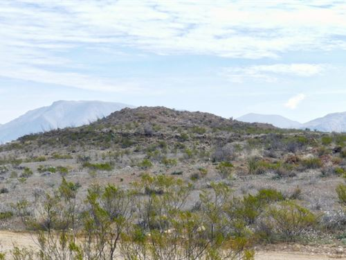 50 Acres In The High Desert : Terlingua : Brewster County : Texas