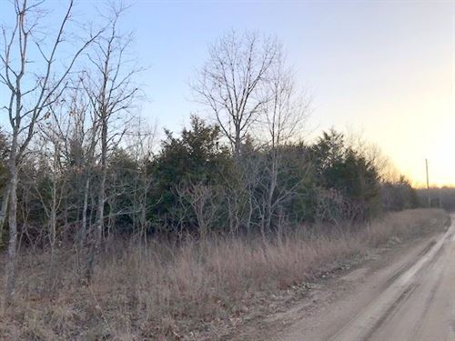 All Wooded Acreage Abundant : Harrison : Boone County : Arkansas
