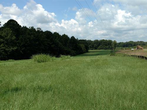 Beautiful Pasture & Mature Timber : Lexington : Wilkes County : Georgia