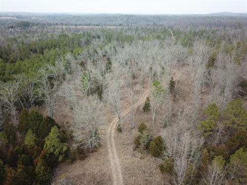 Missouri Ozark Hunting Property : Dora : Ozark County : Missouri