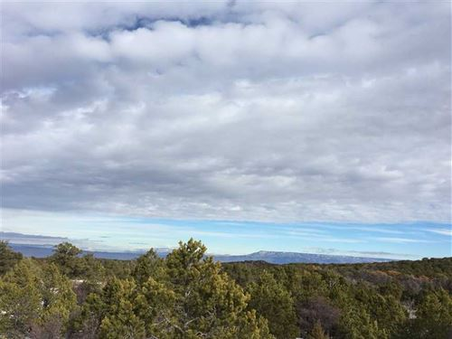 The Ranches at Elk Reserve Lots 21 : Glade Park : Mesa County : Colorado