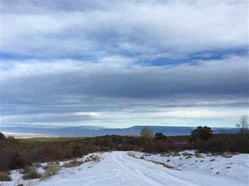 The Ranches at Elk Reserve Lot 25 : Glade Park : Mesa County : Colorado