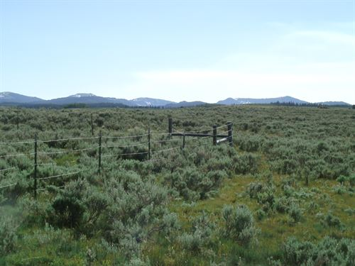 Daniel Ridge : Daniel : Sublette County : Wyoming