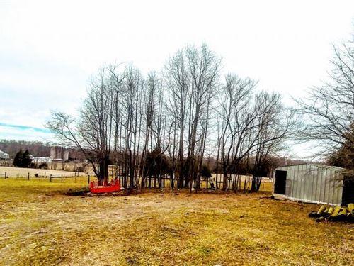 42 Acre Hurdle Mills Mini Farm : Hurdle Mills : Person County : North Carolina