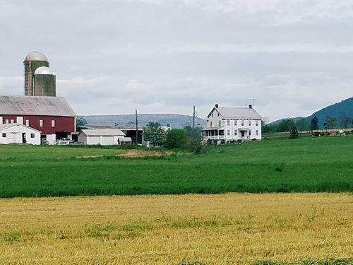 Unique Farm Opportunity : Saint Thomas : Franklin County : Pennsylvania