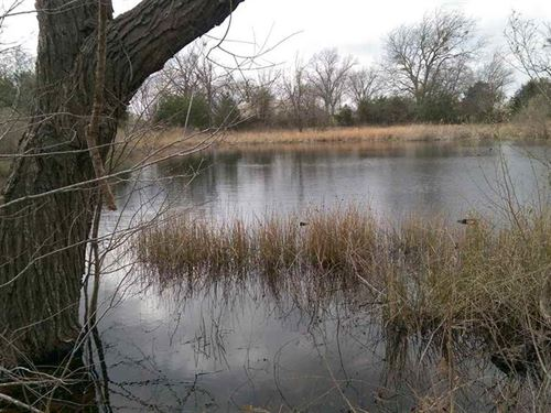 Ponds Wildlife And Cropland : Bogata : Red River County : Texas