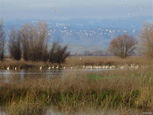 Duck Club, Cabin in Northern CA : Princeton : Colusa County : California