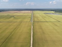 1241 Acres Rice Farm : Newport : Jackson County : Arkansas