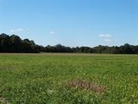 Poinsett County 609 Farm And Duck : Hickory Ridge : Poinsett County : Arkansas