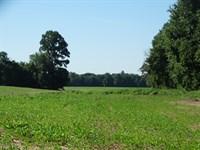 2 Rivers Farm, Black River : Black Rock : Randolph County : Arkansas