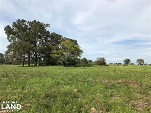 Cattle And Horse Farm With Hunting : Crystal Springs : Copiah County : Mississippi