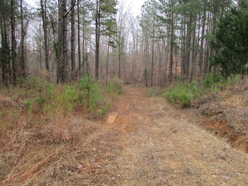 Acreage 117.76, Chester County : Enville : Chester County : Tennessee