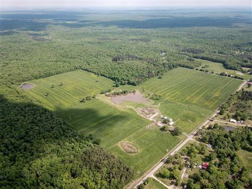 115 Acre Ranch in Williamsville : Williamsville : Butler County : Missouri
