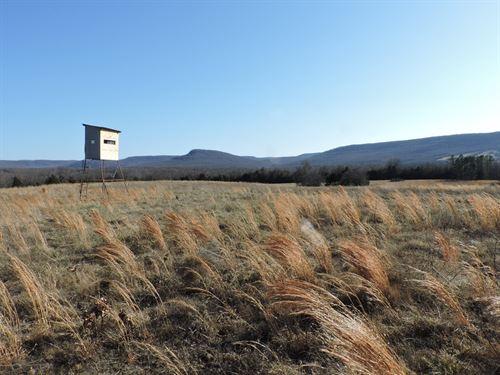 Country Home Ozark Mountain View : Harrison : Boone County : Arkansas