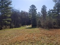 50+/- Acres Owner Financing : Sweetwater : McMinn County : Tennessee