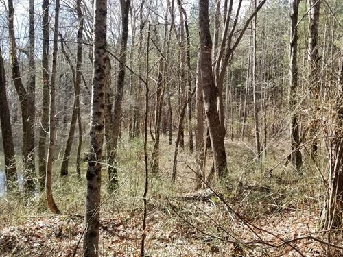 50+/- Acres Owner Financing Level : Sweetwater : McMinn County : Tennessee