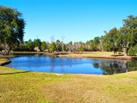 Idyllic Gentleman Farm : Screven : Wayne County : Georgia