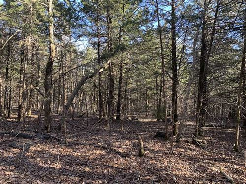 Great Laying 12.08 Acres With Grea : Gravois Mills : Morgan County : Missouri