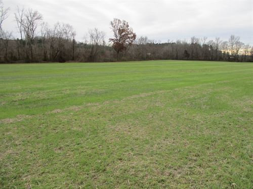 Great Hunting & Cropland 184 Acres : Bethel Springs : Chester County : Tennessee
