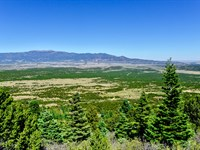 Wooded Lot On Mountain By Blm Land : Walsenburg : Huerfano County : Colorado