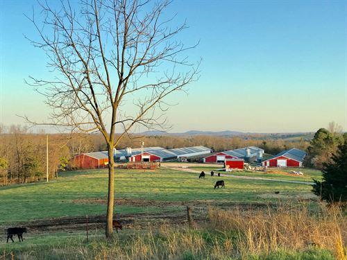 Tyson 4 Hse 2000 Age Broiler Farm : Omaha : Boone County : Arkansas