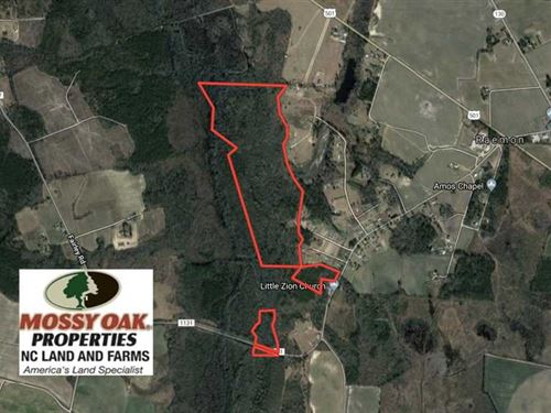 134 Acres of Hunting Land For Sale : Maxton : Robeson County : North Carolina