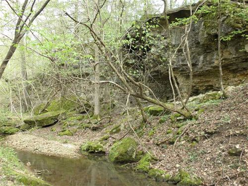 Secluded 60 Acre Wildlife Playgrou : Cole Camp : Benton County : Missouri